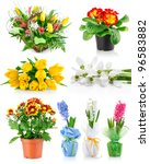 set spring flowers with green...   Shutterstock . vector #96583882