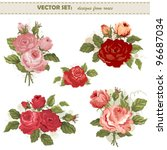 Vector Set From Roses