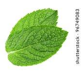 fresh mint leaves isolated on... | Shutterstock . vector #96749083