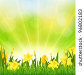 flowers easter background | Shutterstock . vector #96802183