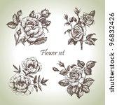 floral set. hand drawn...   Shutterstock .eps vector #96832426