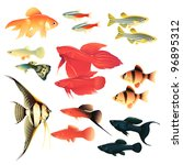 Aquarium fishes: great collection of highly detailed illustrations with tropical tank fishes.
