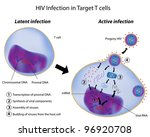 Latent and Active infection of t cell by HIV - stock photo