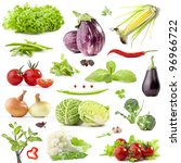 collection of vegetables with a ... | Shutterstock . vector #96966722