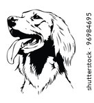 Irish Setter Dog Head   Vector...