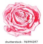 romantic  rose  r rose | Shutterstock .eps vector #96994397