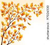 Autumn Oak Tree Branch On...