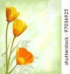 California Poppy  Eschscholzia...