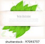 background with green leaves... | Shutterstock .eps vector #97093757