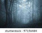 Dark Path Through A Mysterious...