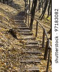 Track In The Autumn Forest In...