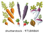 tuber collection | Shutterstock .eps vector #97184864
