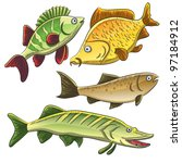 fish collection   Shutterstock .eps vector #97184912