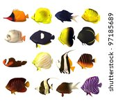 3d render of tropical fishes - stock photo