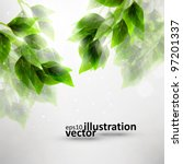 beautiful green leaves  eco... | Shutterstock .eps vector #97201337