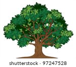 vector oak tree | Shutterstock .eps vector #97247528
