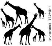 Set Of Fine Giraffe Silhouettes ...