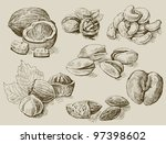 set of nuts | Shutterstock .eps vector #97398602