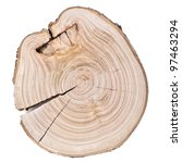 tree rings. wooden background | Shutterstock . vector #97463294
