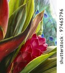 Small photo of Red Ginger (Alpinia purpurata) tropical flower from Hawaii in studio setting