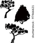 Fur Tree A Fir A Pine Trees On...