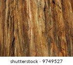 Incense Cedar Bark Macro
