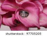 wedding bouquet with wedding... | Shutterstock . vector #97705205