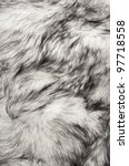Polar Fox Fur Texture For...