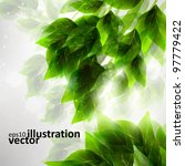 beautiful green leaves  eco... | Shutterstock .eps vector #97779422