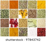 collection of different spices... | Shutterstock . vector #97843742