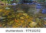 Tannin Colored Mountain Stream...