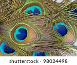 detailed photo of a bunch of... | Shutterstock . vector #98024498