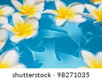 Frangipani Flowers In The Water
