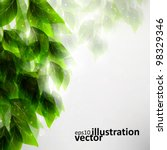 beautiful green leaves  eco... | Shutterstock .eps vector #98329346