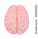 pink brain a top view | Shutterstock . vector #98505062