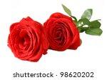 Stock photo bunch of velvet red roses isolated on white 98620202