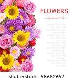 Summer Flowers   Aster...