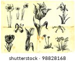 hand drawn collection. spring... | Shutterstock .eps vector #98828168