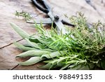 freshly harvested herbs with... | Shutterstock . vector #98849135