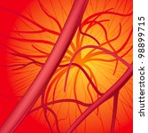 circulatory system. rasterized... | Shutterstock . vector #98899715