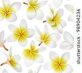 frangipani  plumeria  tropical... | Shutterstock . vector #98904236
