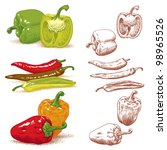 set of various peppers. vector... | Shutterstock .eps vector #98965526