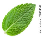 Fresh Mint Leaves Isolated On...