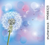 Flower Dandelion On Light Blue  ...