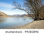 The Bank Of The River By Danube