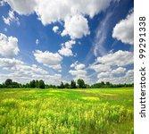 Flowering Meadow And Blue Sky