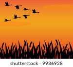 Vector Silhouette Geese And...