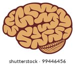 the human brain | Shutterstock . vector #99446456