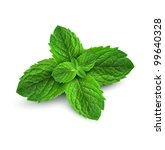 fresh mint leaves on a white... | Shutterstock . vector #99640328
