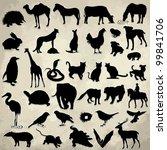 Vintage animal template (42)